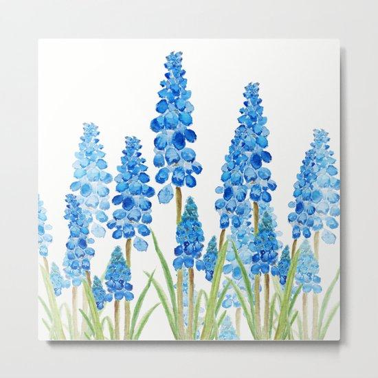 blue grape  hyacinth forest Metal Print
