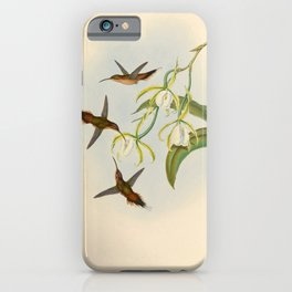 Grey-chinned Hermit Hummingbird by John Gould, 1861 (benefitting the Nature Conservancy) iPhone Case