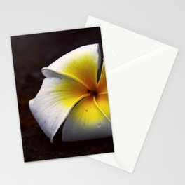 # 339 Stationery Cards