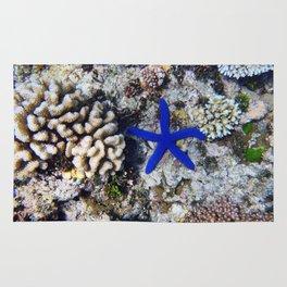 Starfish on the Reef Rug