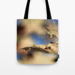 Wet Autumn Tote Bag