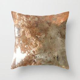 Lodolite Throw Pillow