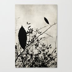 Nature in black and white Canvas Print