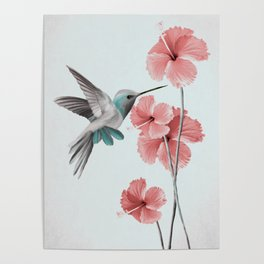 Hummingbird with Hibiscus Poster