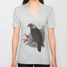 Nestor Parrot, tropical bird of New Zealand Unisex V-Neck
