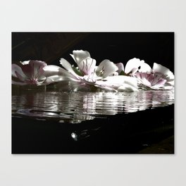 On Still Waters Canvas Print