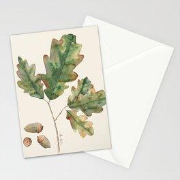 Oak tree  green leaves  Stationery Cards
