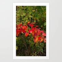 fall beauty Art Print