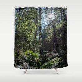 Rainforest Walk Shower Curtain
