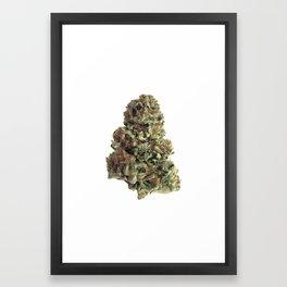 King Kush Framed Art Print