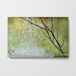 Rain Washed the Spider Out Metal Print
