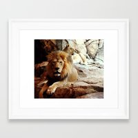 lions Framed Art Prints featuring Lions by Heather Myers