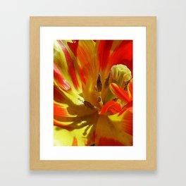 Here Comes the Sun Framed Art Print