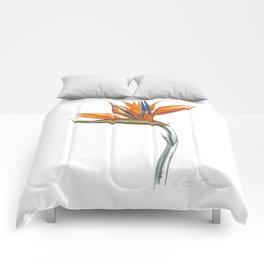 Bird of Paradise 01 Botanical Flower Comforters