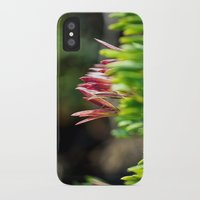 plant iPhone & iPod Cases featuring plant by  Agostino Lo Coco