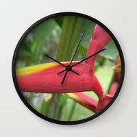 "indonesia Wall Clocks featuring Flower ""Heliconia"" (Bali, Indonesia) by Christian Haberäcker - acryl abstract"