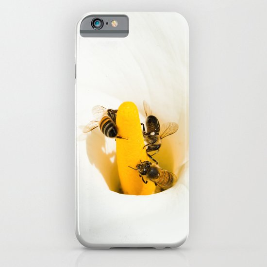 Calla Lily With Bees iPhone & iPod Case