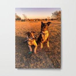 Companions Metal Print