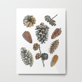 Watercolor hand painted cones Metal Print