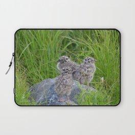 Triplets - Baby Seagulls Laptop Sleeve