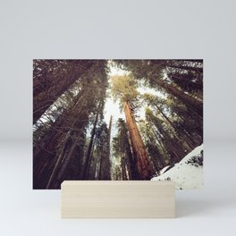 Deep in the Forest Mini Art Print
