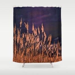 Abstract beach grass Shower Curtain
