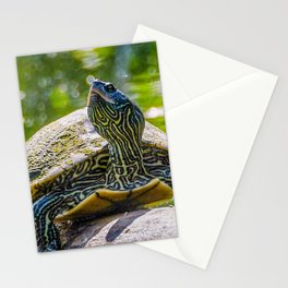 Turtle is the New Leopard Print Stationery Cards
