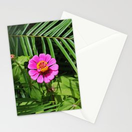 The Florida Front Stationery Cards