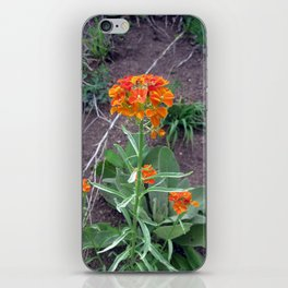 Western Wallflower iPhone Skin