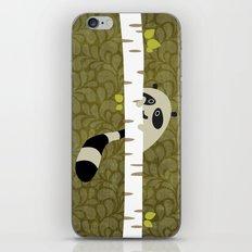 A shy raccoon iPhone Skin