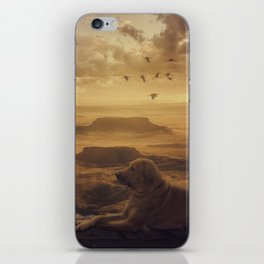 Amazing view at sunset iPhone Skin