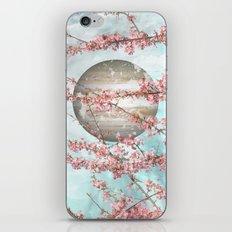 Spring Jupiter iPhone & iPod Skin