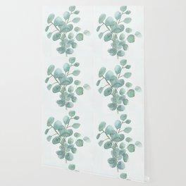 Eucalyptus Silver Dollar Wallpaper