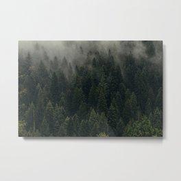 Trees and Fog Metal Print