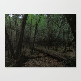 Bosco Canvas Print