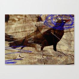 Crow's feet Canvas Print