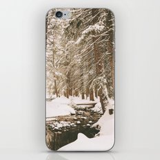 Winter Wonderland in the Forest iPhone & iPod Skin
