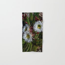 White Argentine_Giant_Cacti in Bloom Hand & Bath Towel