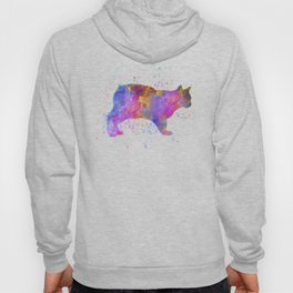 Manx cat in watercolor Hoody