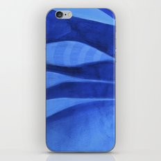 the feathers iPhone Skin