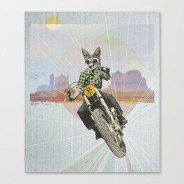 Wild road Canvas Print