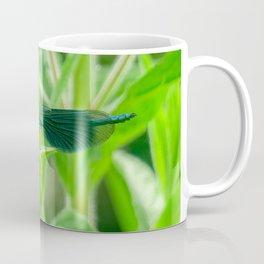 Damselfly Eating Lunch Coffee Mug