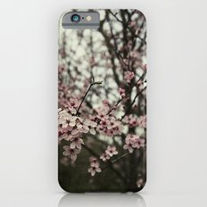 Pink spring blossom iPhone 6s Slim Case