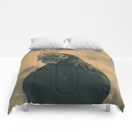 Rooster in Sepia Comforters