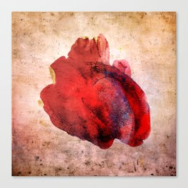 A Heart Canvas Print