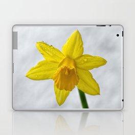 Daffodil III Laptop & iPad Skin