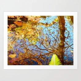 Autumn colors 2 Art Print