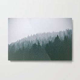 Winter VII Metal Print