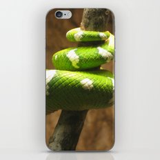 Tight Squeeze iPhone & iPod Skin
