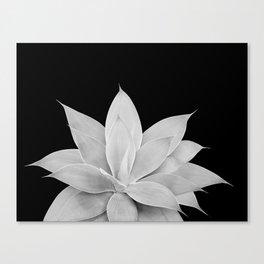 Gray Agave on Black #2 #tropical #decor #art #society6 Canvas Print